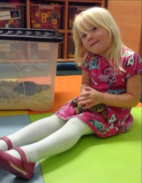 Learning all about reptiles at Kids 1st Hexham